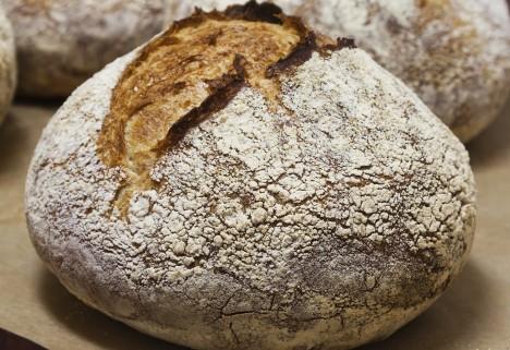 Bread Buzzwords Feature