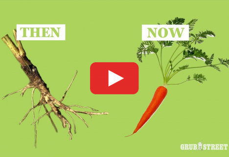 See What Fruits and Veggies Looked Like Before Modern Farming (Spoiler: Way Different!)