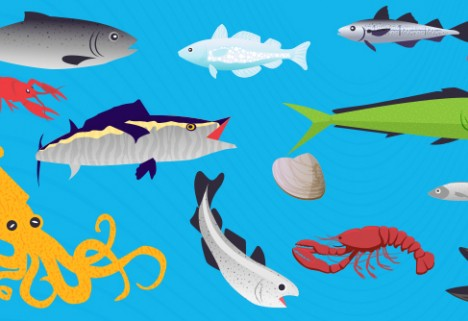 How to Choose the Safest Seafood [Infographic]
