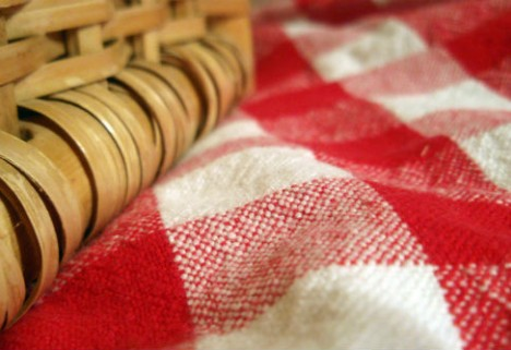 DIY Craft Series: How to Make a Waterproof Picnic Blanket