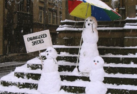 5 Happy Things: Homemade Snowpeople Edition