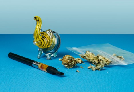 The Crazy-Interesting Stuff No One Tells You About Weed