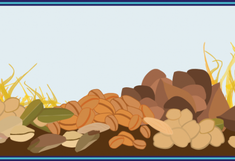 Your Go-To Guide for Choosing Healthier Grains [INFOGRAPHIC]