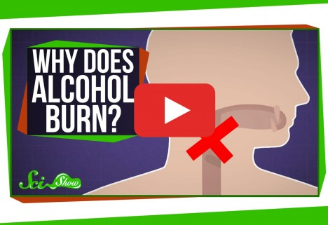 Why Does Drinking Alcohol Burn My Throat?
