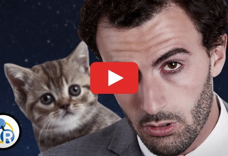 The Unexpected Benefit of Watching Cat Videos at Work