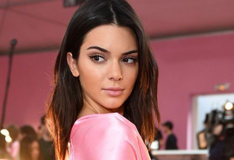 Kendall Jenner Baker-Miller Pink