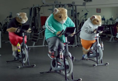 80s Workout Montage + Lady Gaga = Three Fit Kia Hamsters [Video]