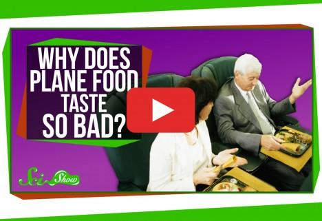 Why Airplane Food Tastes So Bad
