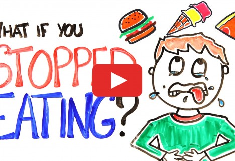 What Would Happen If You Stopped Eating
