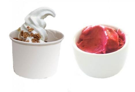 Frozen Yogurt vs. Sorbet – The Greatist Debate