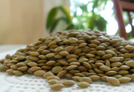 Superfood: Lentils