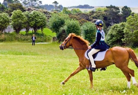 Know Before You Go: Horseback Riding