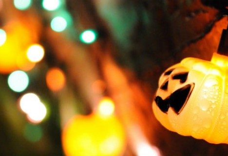 Quote: Costumes on Halloween? Try Dressing Up Every Day