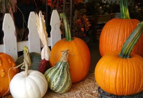 Try This Season's Healthiest Gourd: Pumpkin