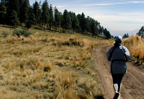 Know Before You Go: Trail Running