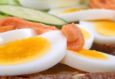 Are Eggs Healthy? Study Denies Link to Cardiovascular Disease