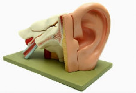 How Hard Is It to 3D Print a Real Ear? One Lab Already Has