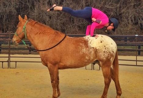 yoga on a horse