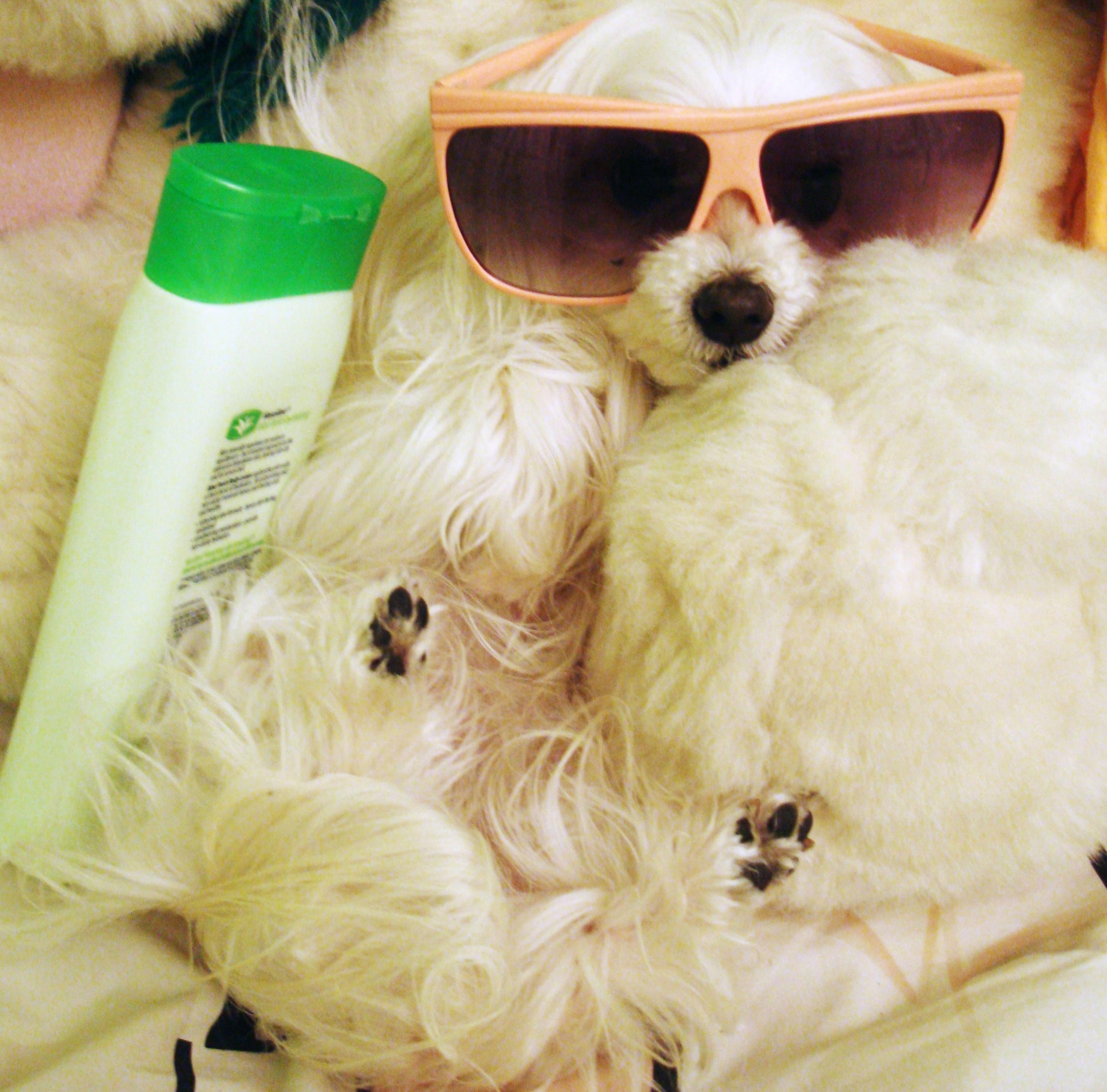 sunscreen tip